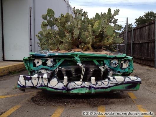 Cactus Car - Austin, TX